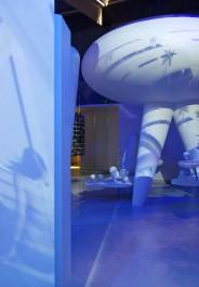 30 juni 2011, NAI opening, Rotterdam
